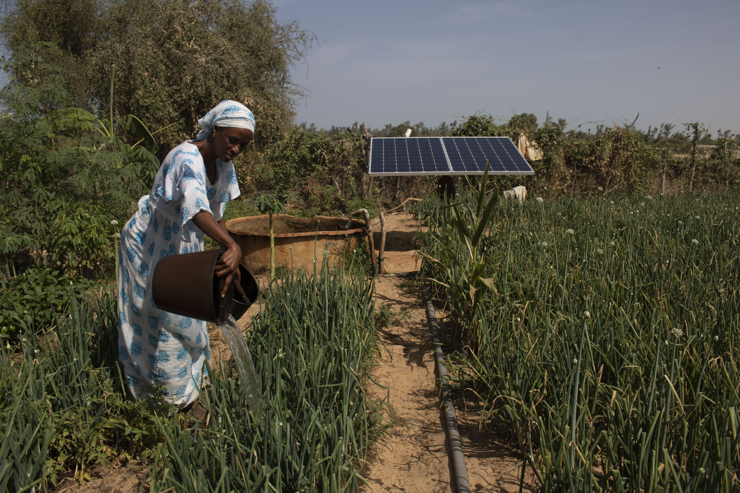 The ENERGIA Solidarity Fund helps revive the businesses of women affected by the pandemic